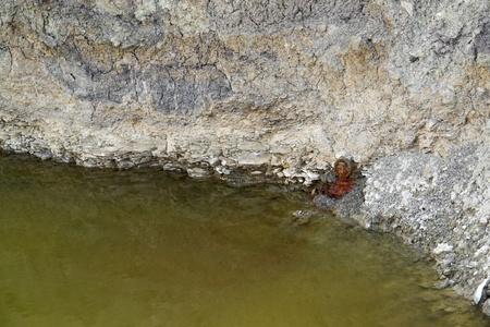 water contamination: la contaminaci�n del tema de la contaminaci�n del agua en todo Foto de archivo