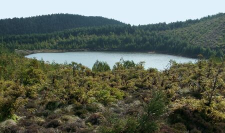 agriculture azores: overgrown scenery with small lake at S Stock Photo
