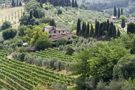 panoramic scenery located in the Chianti region of Tuscany, a area in Italy (Southern Europe) Stock Photo