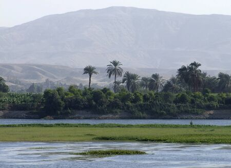 waterside scenery at Nile in Egypt photo