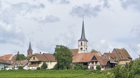 des vins: peaceful scenery showing Mittelbergheim, a village of a region in France named Alsace