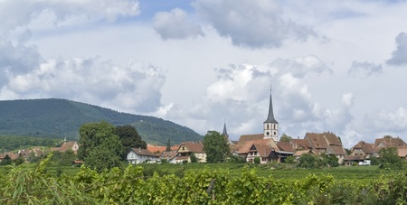 des vins: idyllic scenery including Mittelbergheim, a village of a region in France named Alsace