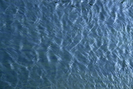 standing water: abstract background of a water surface with small waves