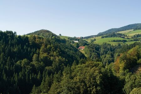 idyllic pictorial scenery in the Black Forest at summer time Stock Photo - 10987916
