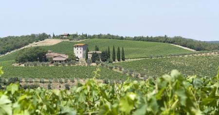 scenery around Gaiole near Castle of Brolio in the Chianti region of Tuscany in Central Italy photo