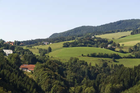 idyllic scenery in the Black Forest at summer time with houses, meadows and forest Stock Photo - 11964965