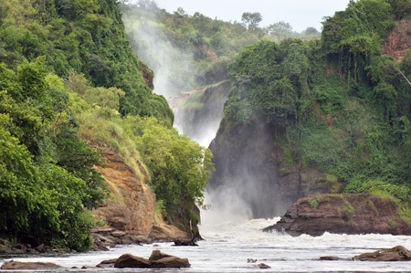 waterside scenery at the Murchison Falls in Uganda (Africa)  photo