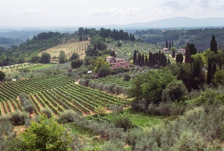 panoramic scenery located in the Chianti region of Tuscany, a area in Italy (Southern Europe) photo