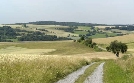 idyllic and rural panoramic scenery in Hohenlohe, a area in Southern Germany at summer time