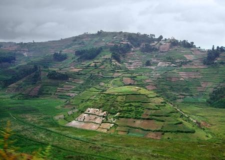 uganda: aerial view around the Virunga Mountains in Uganda (Africa) in stormy ambiance Stock Photo
