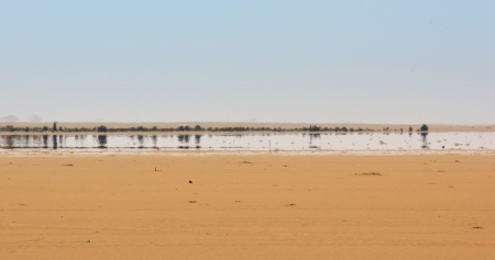 a mirage: a mirage in the Libyan Desert