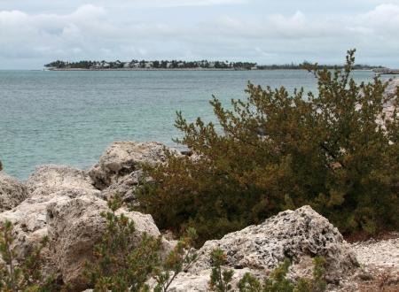 coastal scenery at Key West in Florida  USA  photo