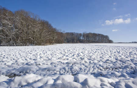 snowbound: snowbound rural landscape at winter time in Hohenlohe, an area in Southern Germany