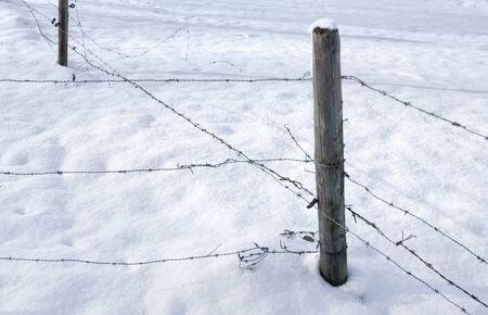 snowbound: detail of a snowbound barbed wire fence
