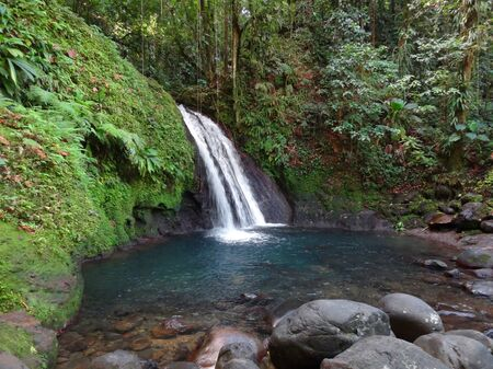 guadeloupe: a waterfall in lush vegetation on a caribbean island named Guadeloupe