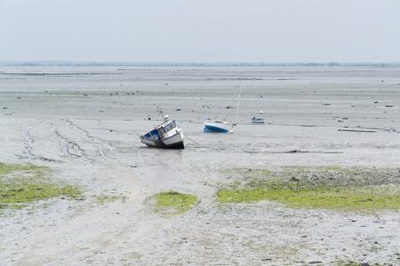 moistness: costiera riflusso scenario marea intorno Cancale, in Bretagna Francia Archivio Fotografico