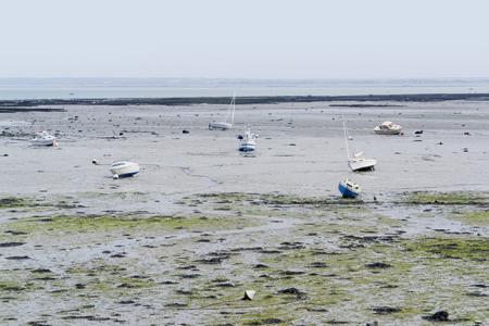 moistness: paesaggio costiero alla bassa marea in giro una citt� in Bretagna di nome Cancale