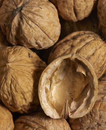 nutshell: full frame walnut background with open nutshell