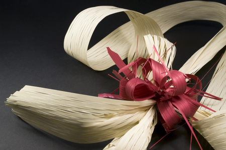 fluting: studio photography of a decorative bow in dark back