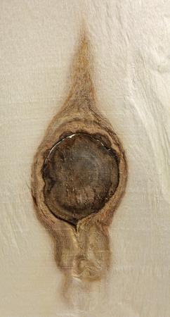 knothole: full frame wooden knothole detail Stock Photo