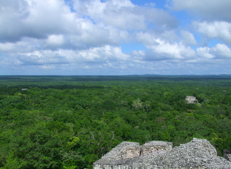 calakmul: temple ruins at Calakmul, a mayan archaeological site in the mexican state of Campeche