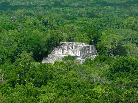 calakmul: mayan temple at Calakmul, a mayan archaeological site in the mexican state of Campeche