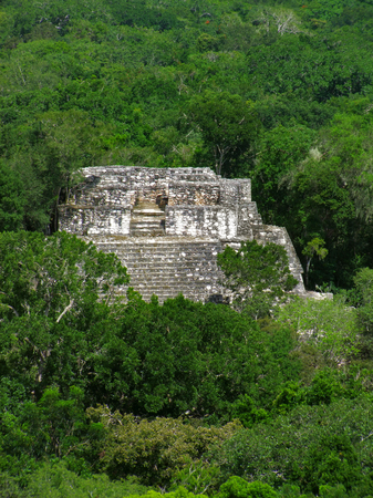 calakmul: temple at Calakmul, a mayan archaeological site in the mexican state of Campeche