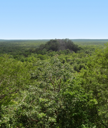 calakmul: distant temple at Calakmul, a mayan archaeological site in the mexican state of Campeche