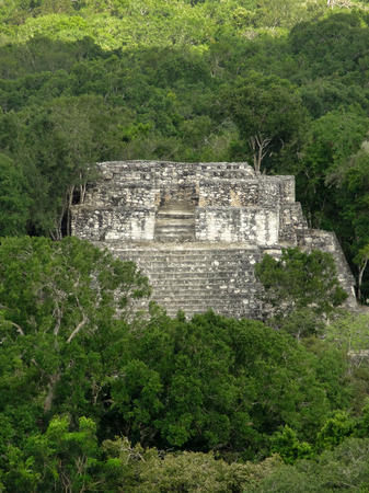 calakmul: ancient temple at Calakmul, a mayan archaeological site in the mexican state of Campeche