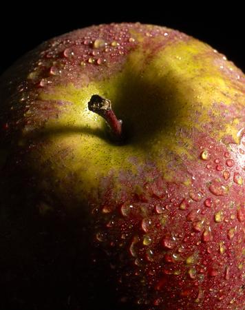 moistness: detail of a wet red apple in dark