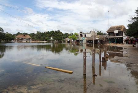moistness: paesaggio inondato intorno Coba, un villaggio in Messico