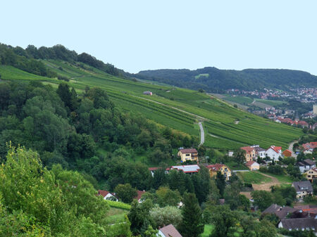 winegrowing: rural landscape with vineyards around Criesbach in Southern Germany named Kochertal