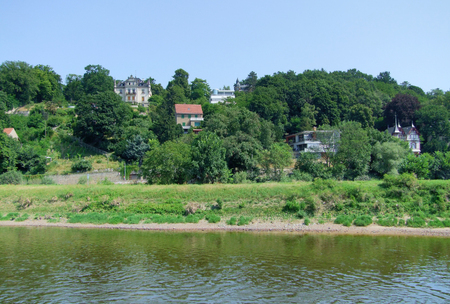 riparian: idyllic scenery at the river Elbe around Dresden in Saxony