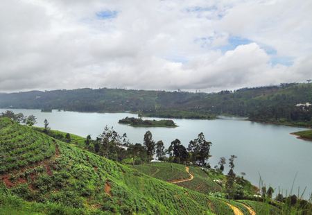 bowery: rural scenery including a tea plantation and river in Sri Lanka Stock Photo
