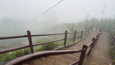 adams: foggy scenery including a stairway to a mountain in Sri Lanka named Adam�s Peak
