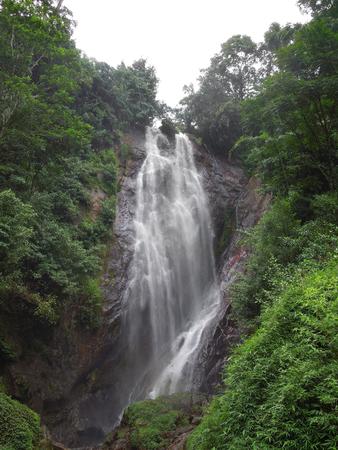 big scenery: overgrown jungle scenery Including a big waterfall in Sri Lanka