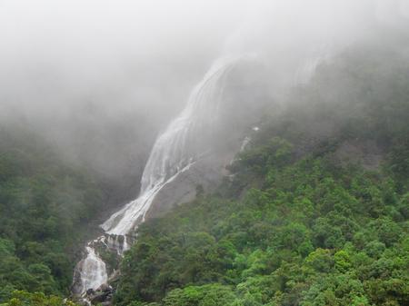 big scenery: foggy jungle scenery Including a big waterfall in Sri Lanka