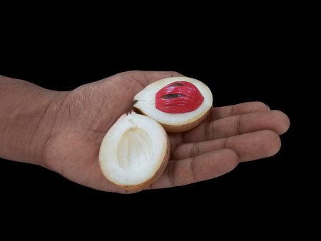 mace: hand holding a opened nutmeg fruit with red mace