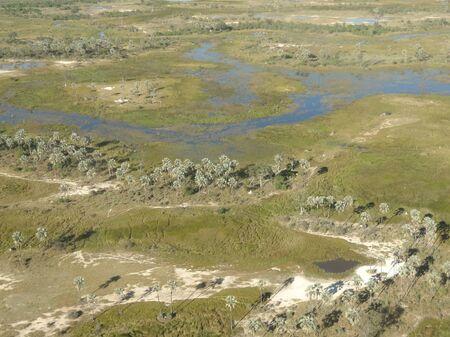 okavango delta: aerial view of the Okavango Delta in Botswana, Africa