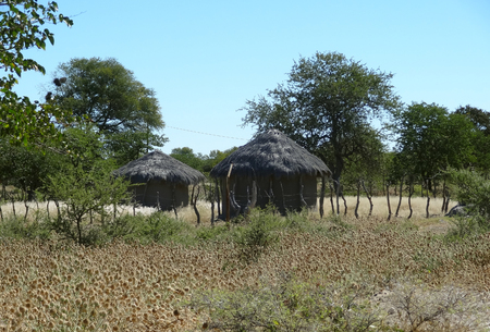 indigene: indigenous village at makgadikgadi in Botswana, Africa Stock Photo