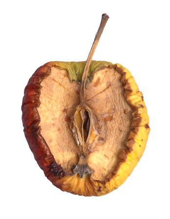 piece of a rotten apple in white back 스톡 콘텐츠