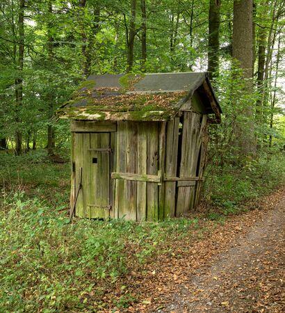 rundown: small rundown cottage in a forest