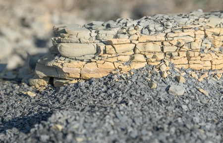 smithereens: closeup shot of a brittle stone detail