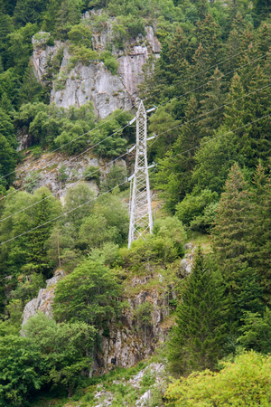 lac: forest scenery with power pole around Lac Noir in the Vosges mountains near Orbey in Alsace, France