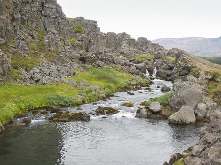 rivulet: waterside scenery at a stream in Iceland