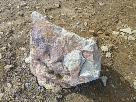 stone volcanic stones: boulder on the ground seen in Iceland