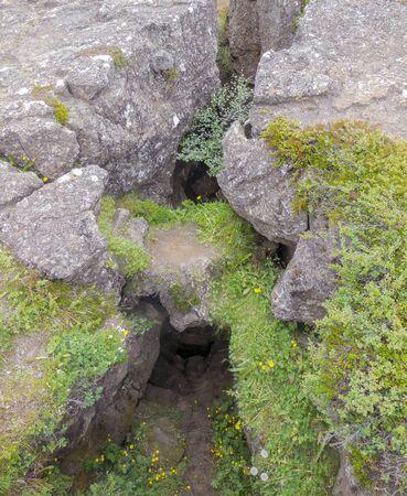 cleft: overgrown rock detail seen in Iceland Stock Photo