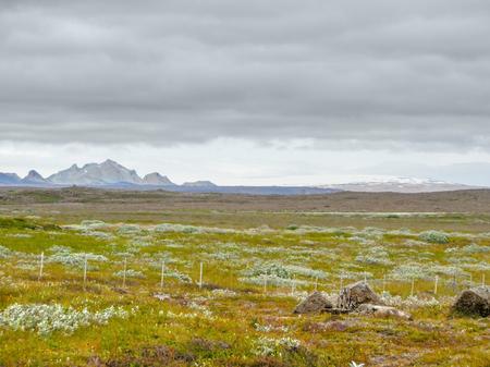 paisaje natural: abandoned natural landscape seen in Iceland Foto de archivo