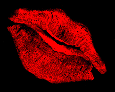 kissing mouth: red print of kissing lips in black back