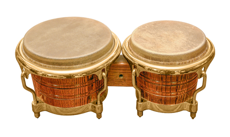 bongo drum: pair of wooden bongo drums in white back